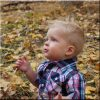 personalized wood picture print of baby boy playing in leaves